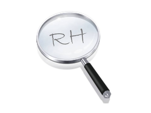 O que o RH faz na empresa?